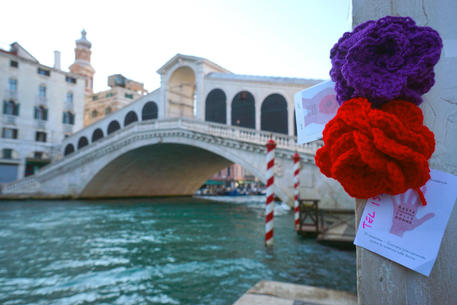 Roses against violence against women in Venice © ANSA